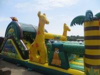 Safari. Parcours gonflable